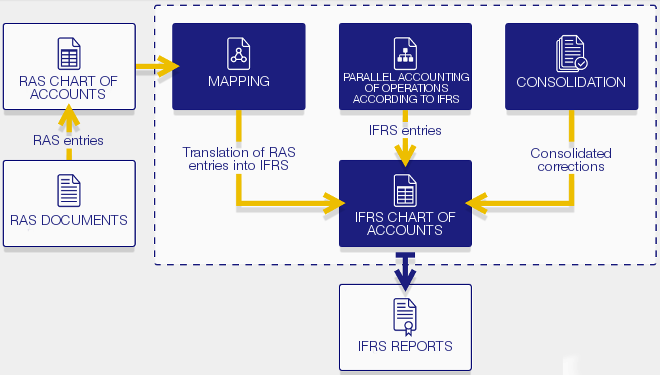 Report formation according to IFRS